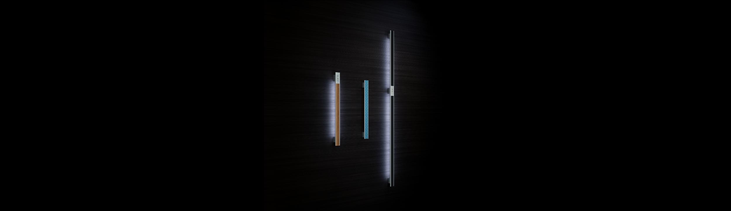 Vision Line inox ročaji za vhodna vrata - Vision Line inox door handles for front doors - Vision Line Edelstahl-Türgriffe für Eingangstür - Griffing